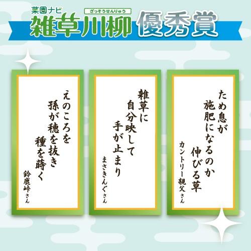 雑草川柳優秀賞