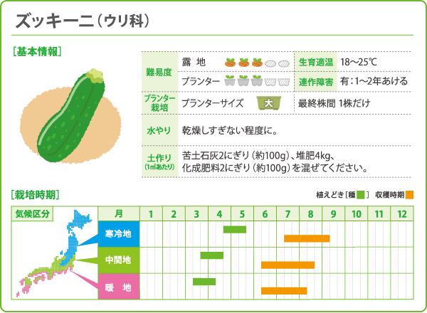 zucchini00